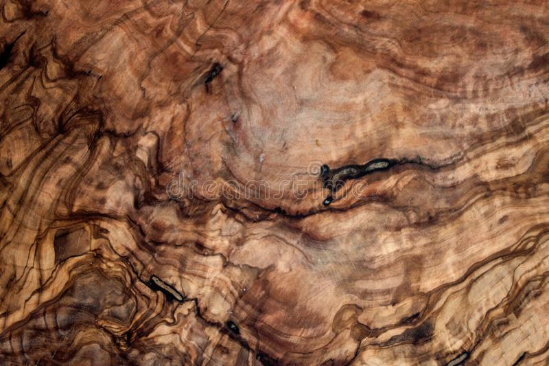 Olive wood brown texture background close up. Vintage wooden background. royalty free stock photo