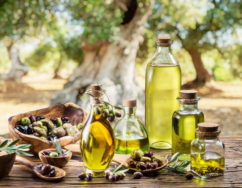 Olivenöl und Beeren sind auf dem Holztisch unter dem Olivenbaum lizenzfreies stockbild