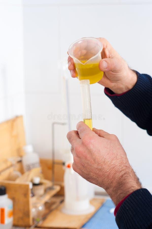 Olivenölqualitätsprüfung lizenzfreies stockfoto