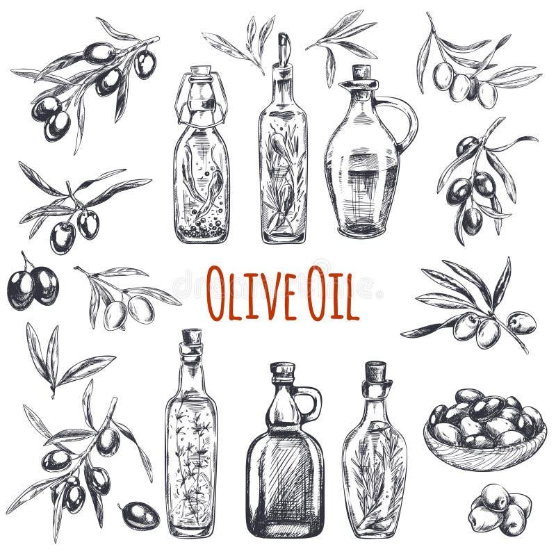 Oliven, die gezeichnete Hand gravierten Illustration lizenzfreie abbildung