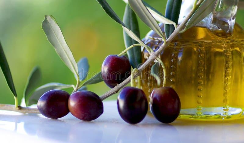 Oliven und Ölivenöl. stockbild