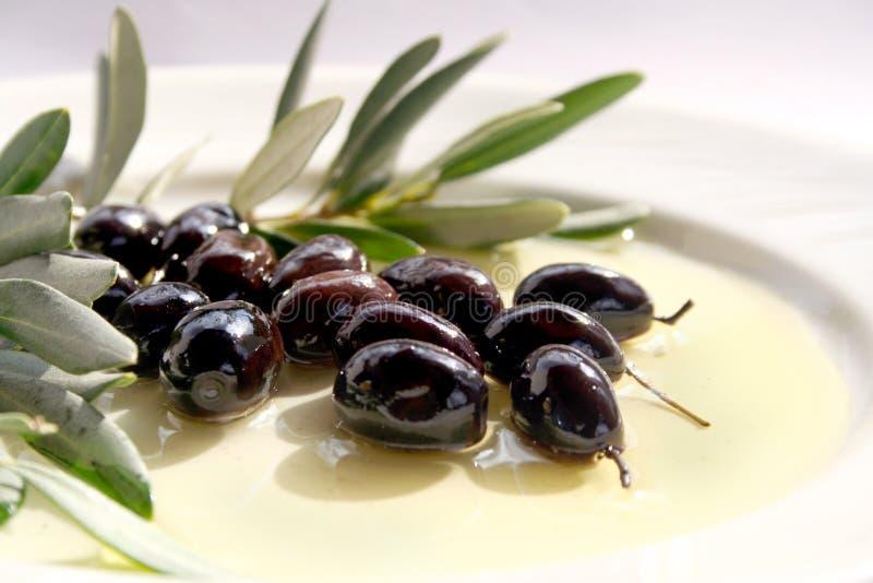 Oliven und Olivenöl lizenzfreie stockbilder