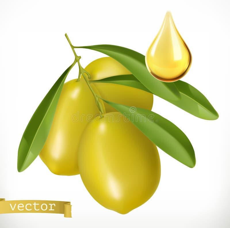 Oliven und Tropfen des Öls Ikone des Vektor 3d lizenzfreie abbildung