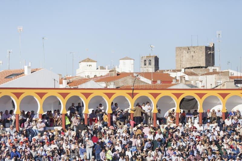 Olivenza Bullring, Spain royalty free stock photos