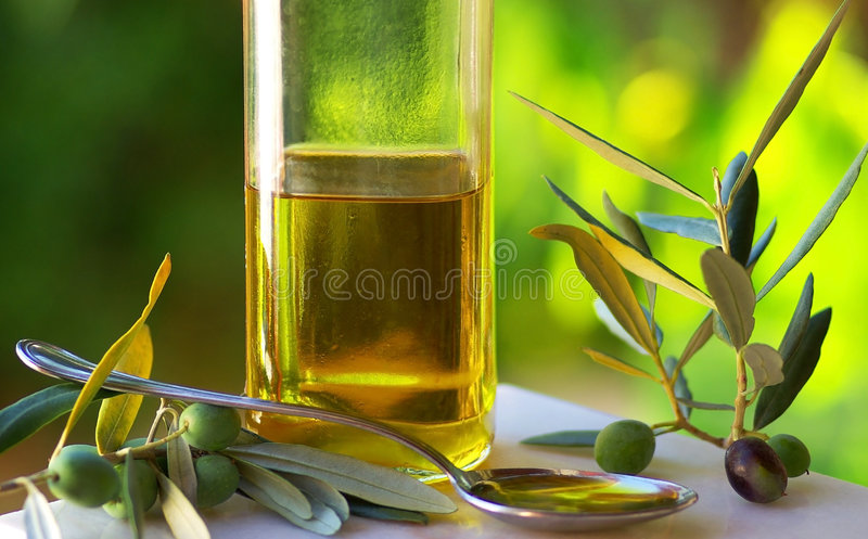 oliveoilolivgrön royaltyfri fotografi