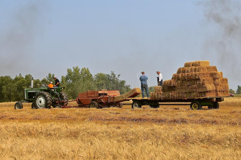 Oliver tractor and New Holland baler harvesting hay. ROLLAG, MINNESOTA, Sept 2, 2017: A field demonstration of haying using an Oliver 1650 tractor and New royalty free stock image
