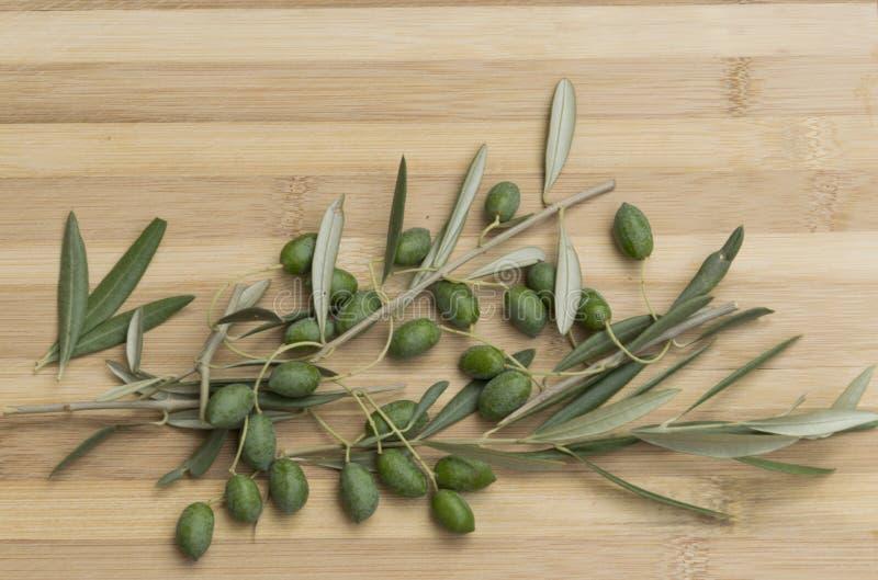 Olives avec la branche images stock