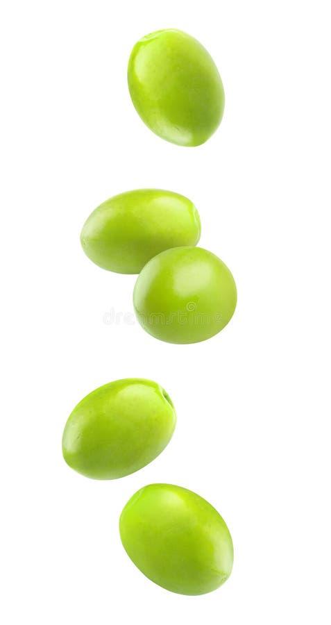 Olives en baisse d'isolement images libres de droits