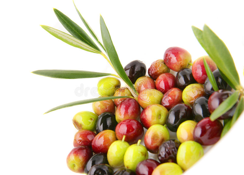 Olives with leafs. This is a photo of some arbequina olives stock photography