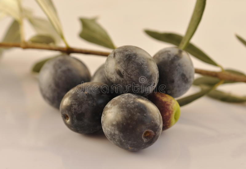Olives noires photographie stock