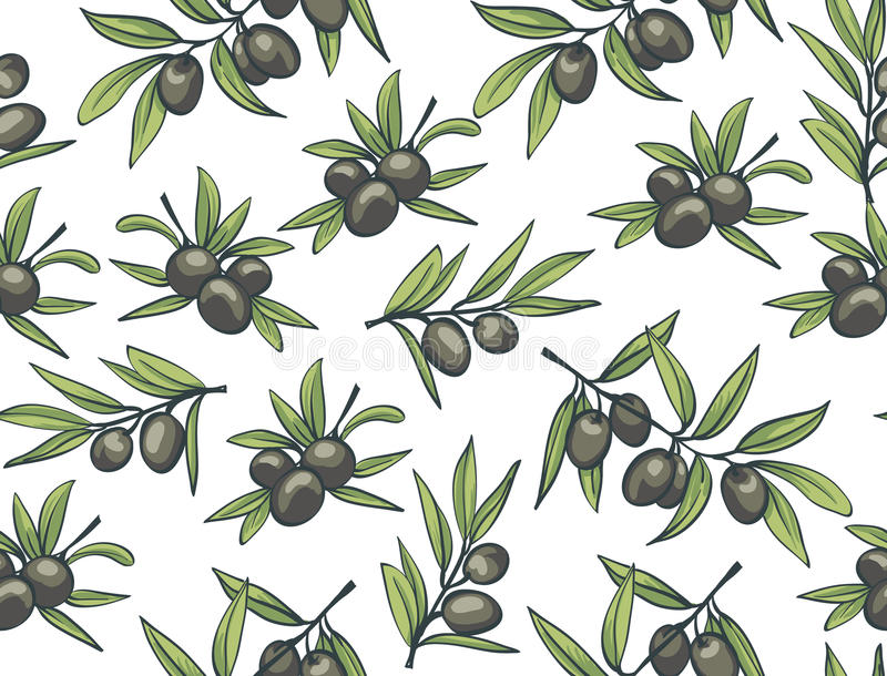 Olives noires des branches sur un fond blanc illustration libre de droits