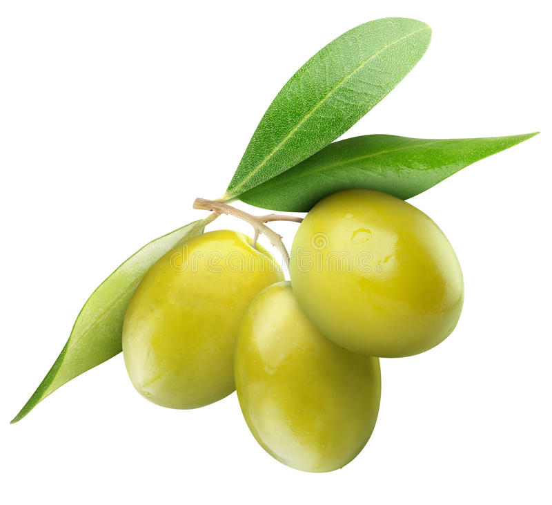 Olives vertes photo stock