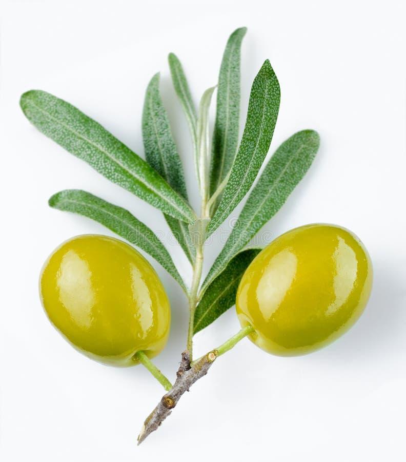 olives vertes photographie stock