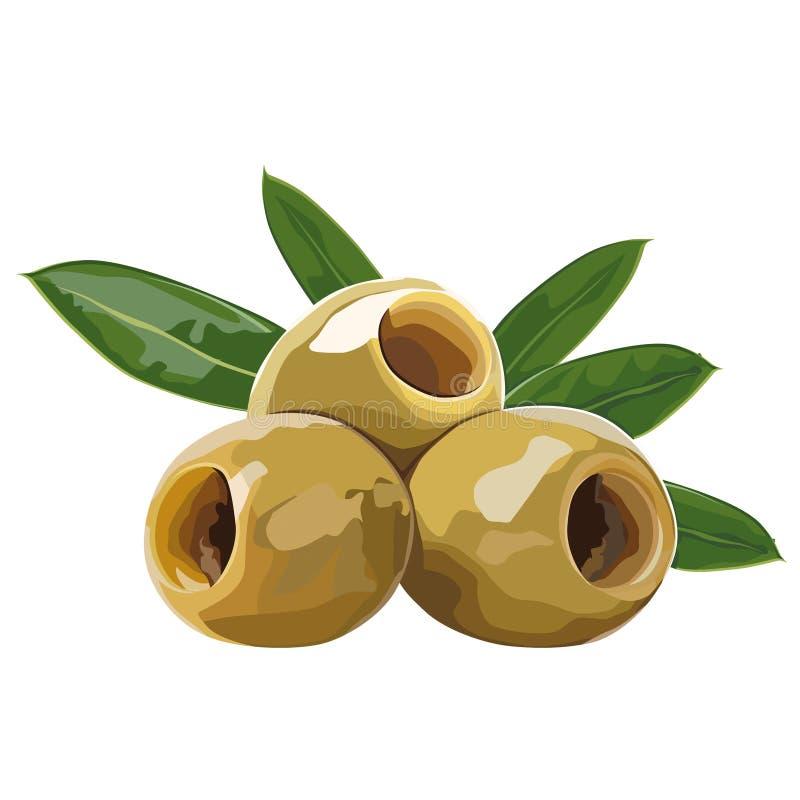olivgrön royaltyfri illustrationer