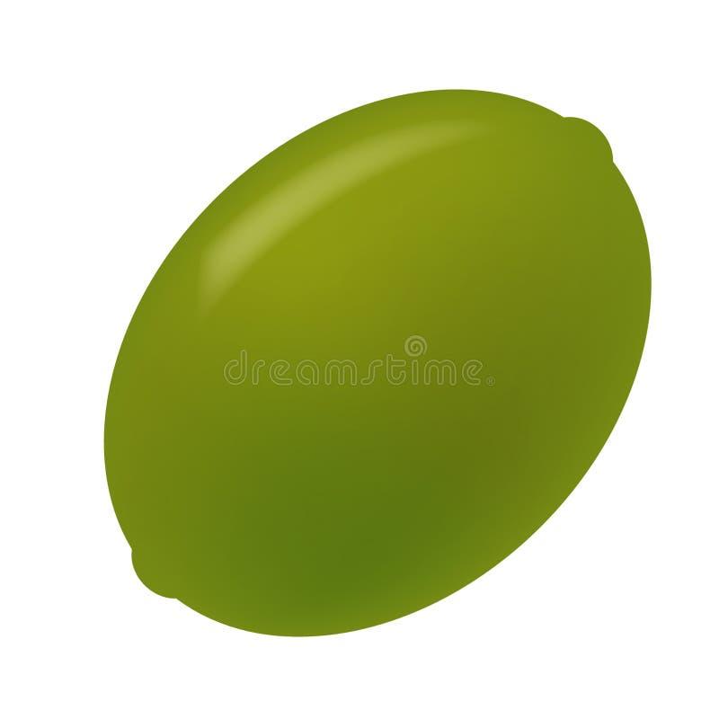 Download Olivgrön stock illustrationer. Illustration av olivgrön - 504292