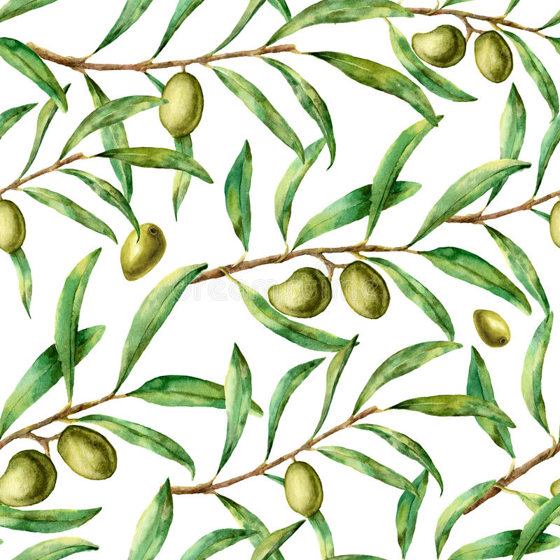 Olivgrön modell för vattenfärg Handen målade den sömlösa blom- prydnaden med det olivgröna bäret och trädfilialer med sidor E stock illustrationer