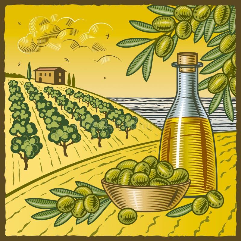 Olivgrüne Ernte lizenzfreie abbildung