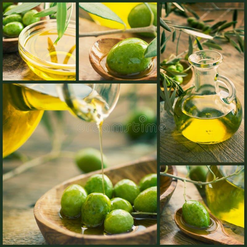 Olivgrüne Erntecollage stockfoto