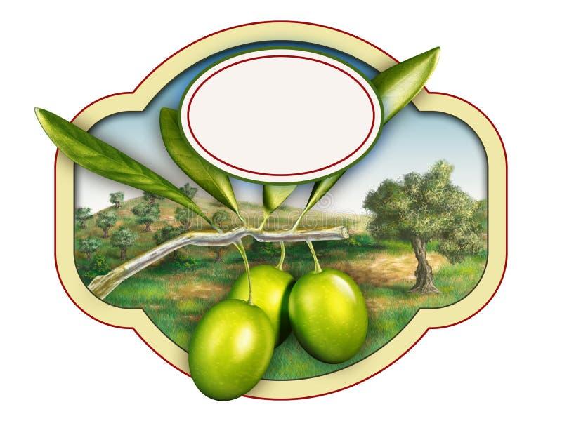 Olivolja royaltyfri illustrationer