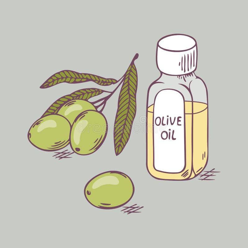 Olivolja i flaska med filialslut upp Dragen bakgrund för vektor hand stock illustrationer