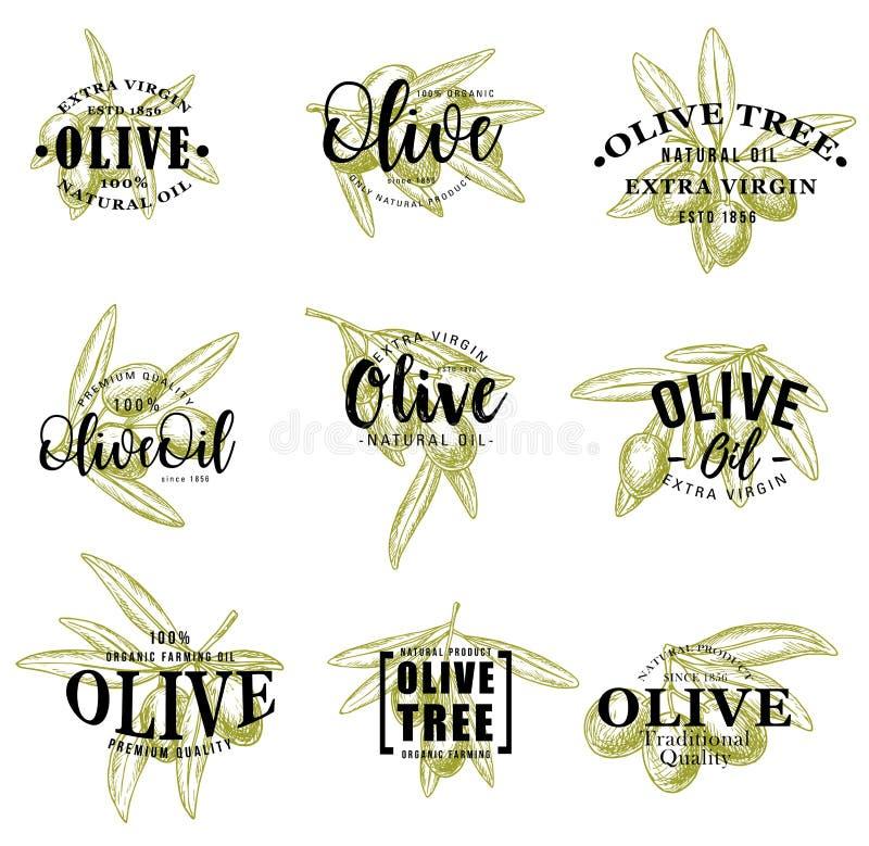Olivolja- och filialsymboler, vektorbokstäver royaltyfri illustrationer