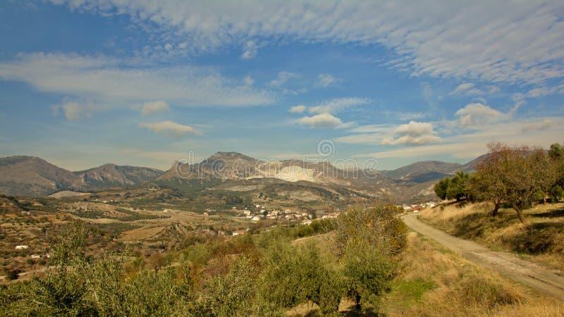 Olivträd och bergväg i Sierre Nevada berg arkivbilder