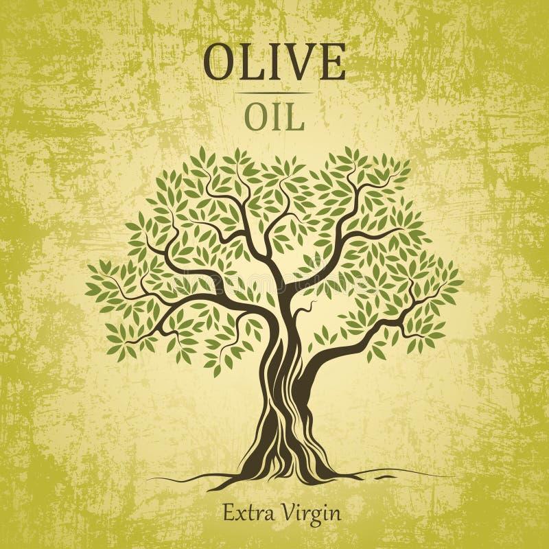 Olivträd. Olivolja. Vektorolivträd på tappningpapper. För etiketter packe. royaltyfri illustrationer