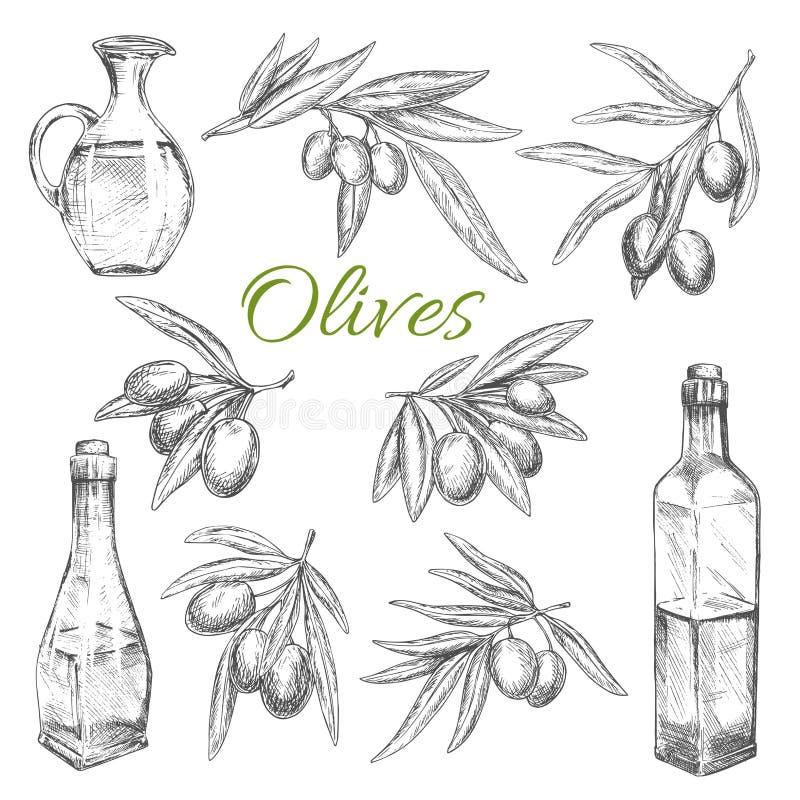 Olivvektorn skissar symboler av olivoljaprodukten stock illustrationer