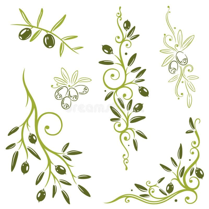 Oliwki, warzywo ilustracja wektor