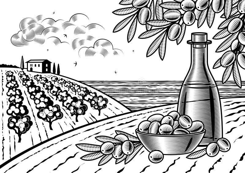 Oliwny żniwo krajobraz czarny i biały ilustracja wektor