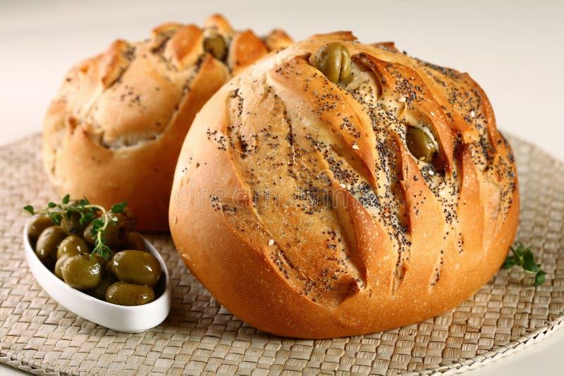 Oliwny chleb obrazy stock