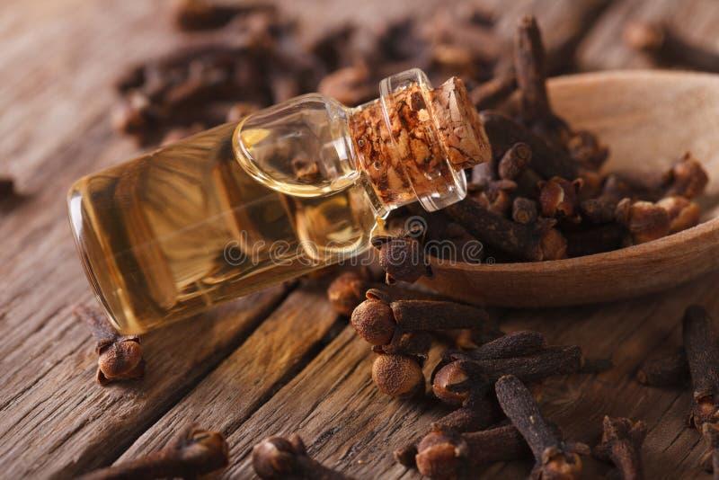 Olja av kryddnejlikor i den horisontalflasknärbilden fotografering för bildbyråer