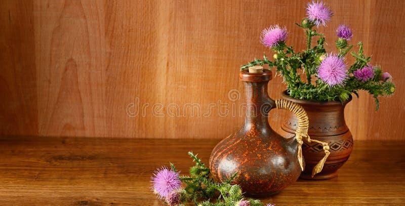 Olja och blommor av mjölkar tisteln på träbakgrund royaltyfria foton