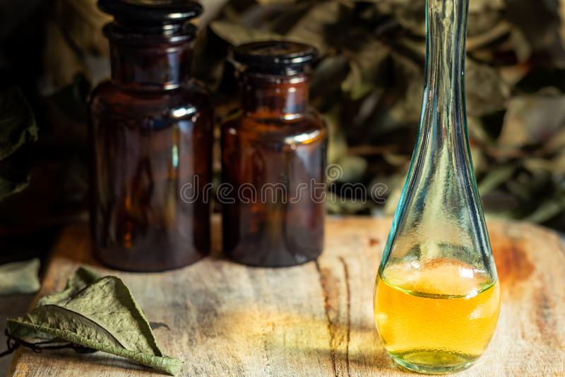 Olja och extrakt av örter och aromatiska medicinalväxter arkivbild