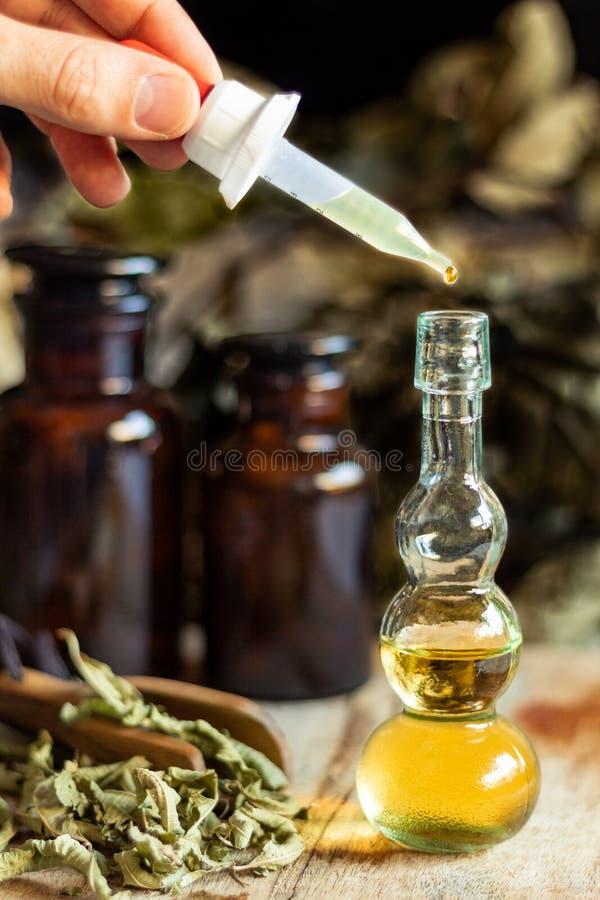 Olja och extrakt av örter och aromatiska medicinalväxter royaltyfri foto