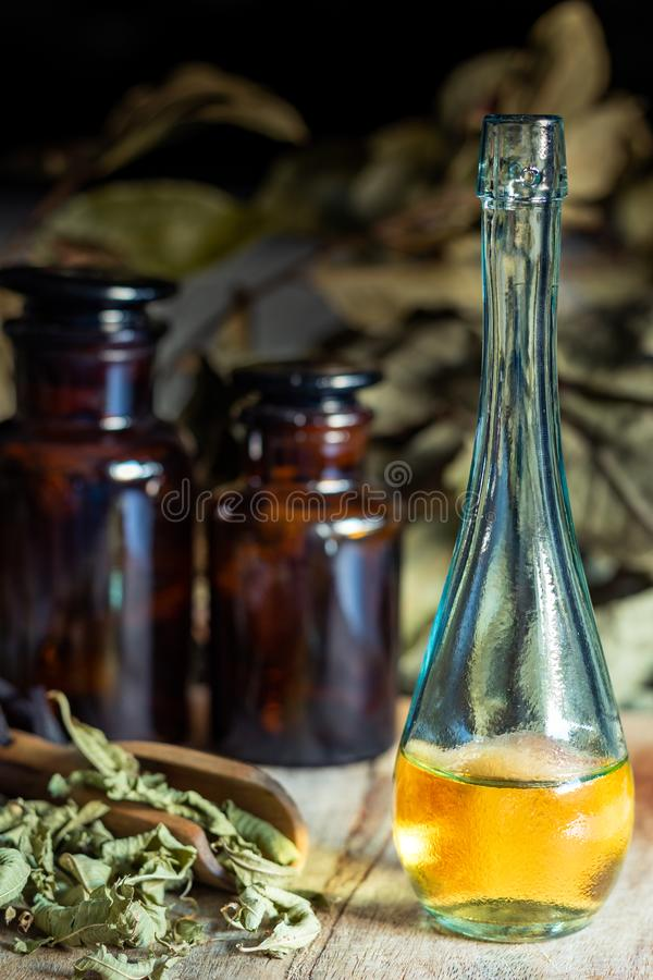 Olja och extrakt av örter och aromatiska medicinalväxter royaltyfria foton