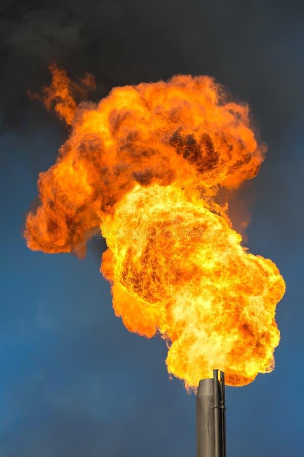 Olje- fackla arkivfoto