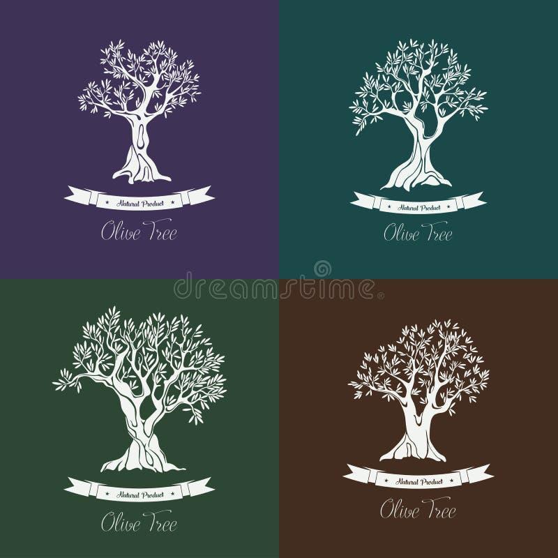 Olje- olivträduppsättning för grek för olivgrön dunge royaltyfri illustrationer