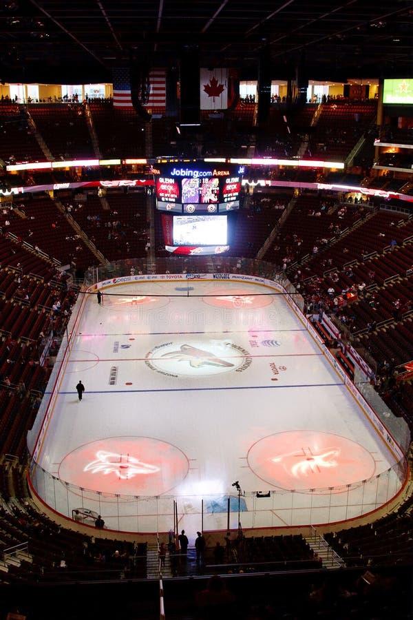 oljekannor phoenix för nhl för prärievargedmonton hockey royaltyfri bild