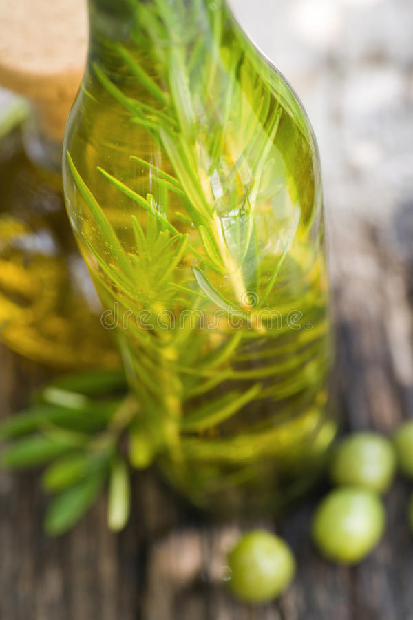 oljeolivgrönrosmarinar arkivfoto