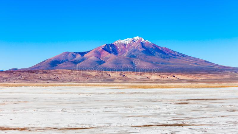 Ollague火山 库存照片