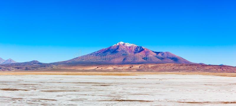 Ollague火山 免版税库存照片