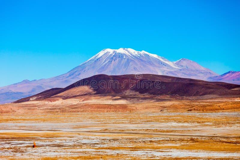 Ollague火山 库存图片