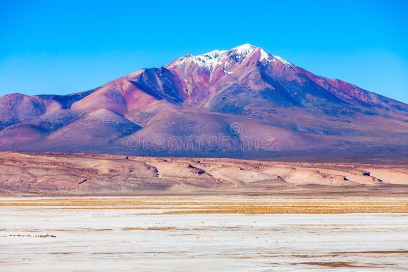 Ollague火山 免版税图库摄影
