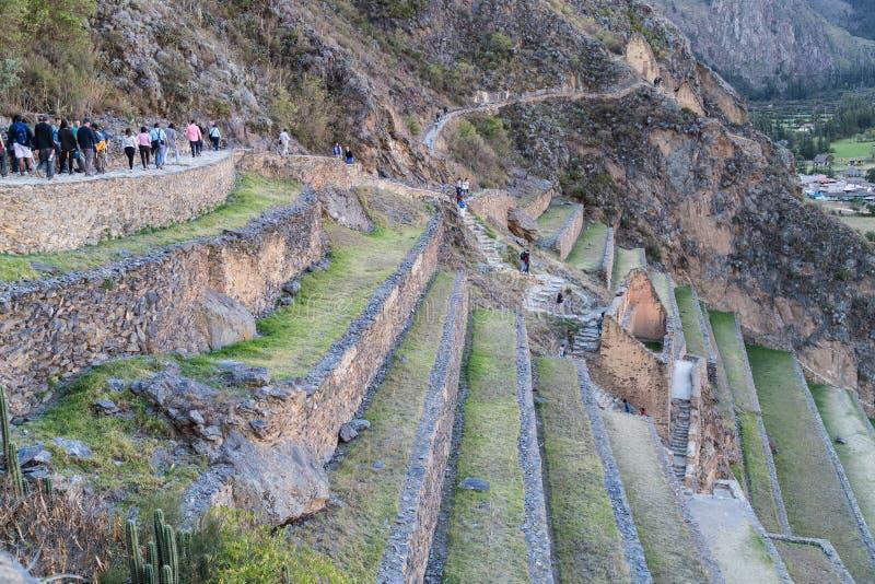 Ollantaytambo Peru - circa Juni 2015: Folk som går på Ollantaytambo terrasser i Peru royaltyfria bilder