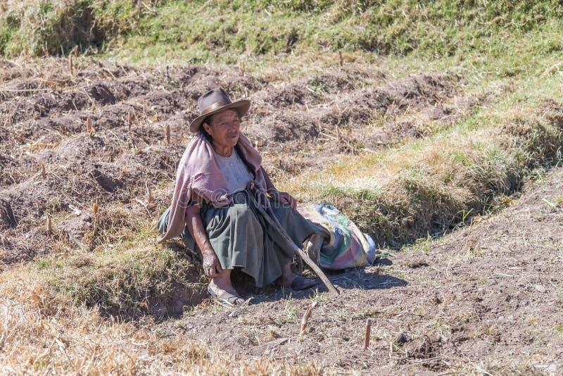 Ollantaytambo, Peru - około Czerwiec 2015: Stara kobieta w tradycyjnych Peruwiańskich ubraniach siedzi na polu blisko Cusco, Peru obrazy stock