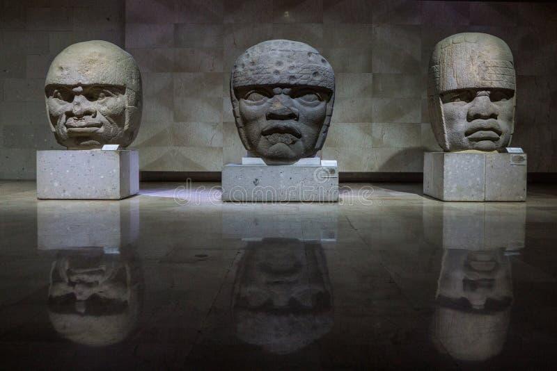 Olmec kamienia głowa zdjęcie royalty free