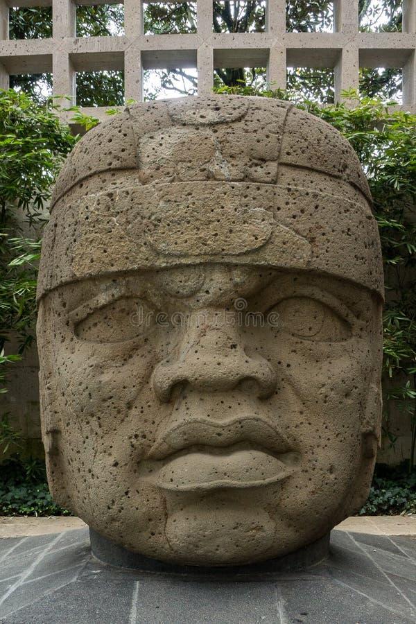 Olmec kamienia głowa fotografia royalty free