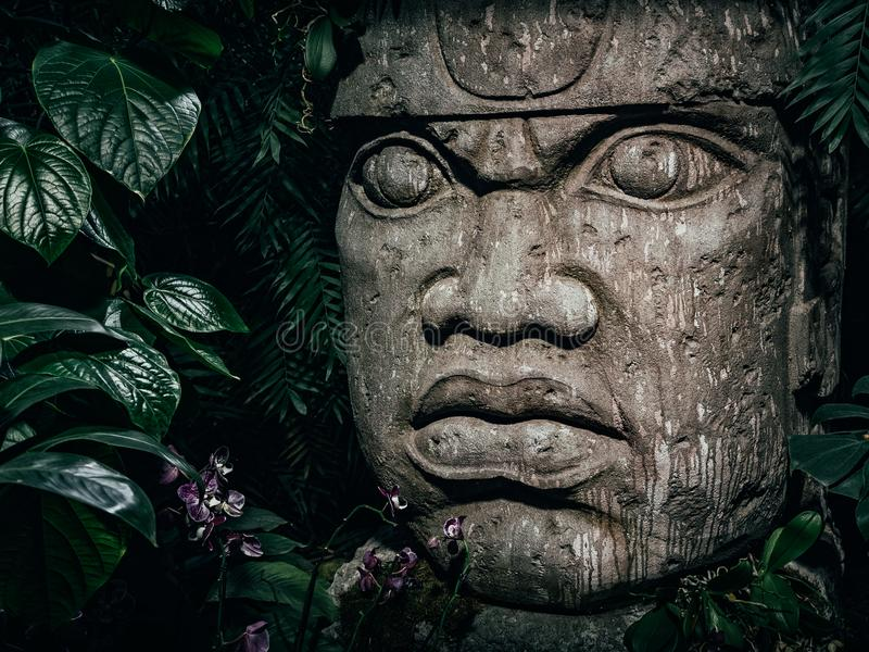 Olmec sculpture carved from stone. Big stone head statue in a jungle.  stock photos