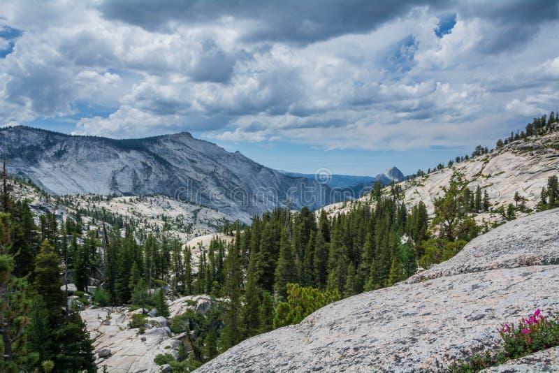 Olmsted Punkt Yosemite stockbilder